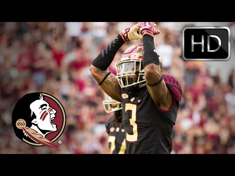 Derwin James || Hardest Hitting Safety in the Country || Ultimate Florida State Highlights