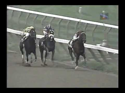 Saratoga - Travers Day 1996 - Full Race Card