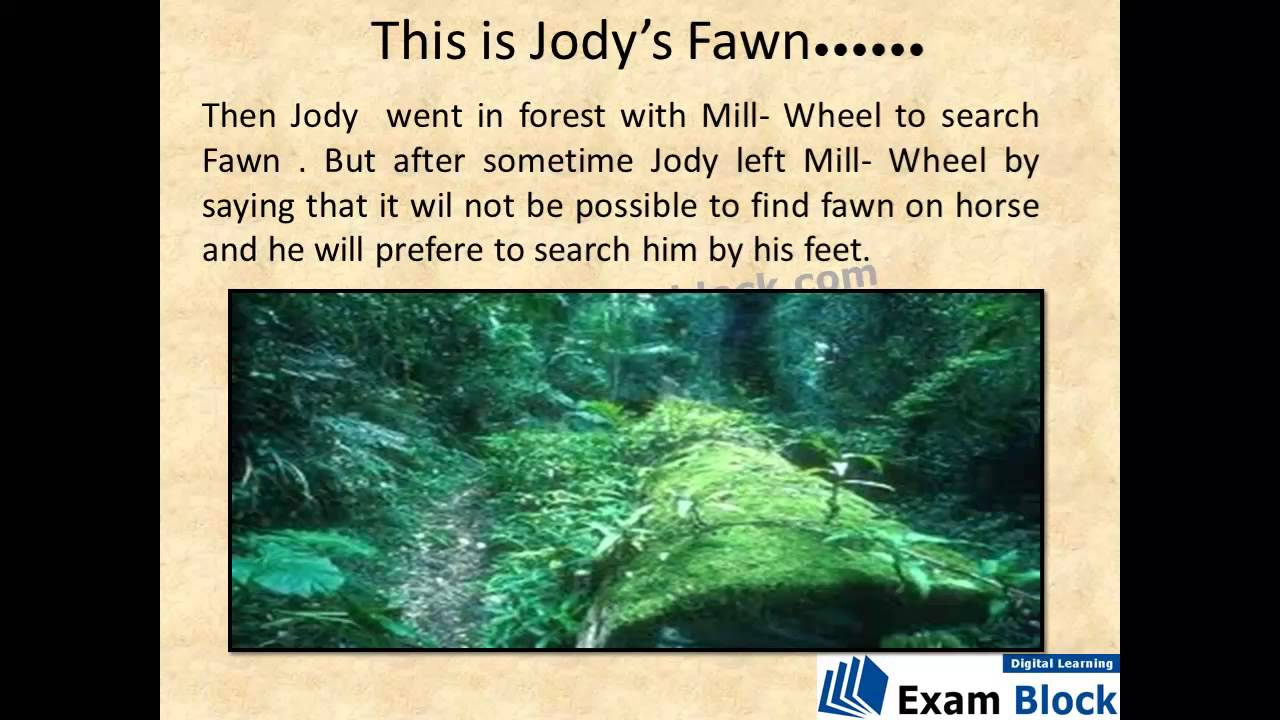 short summary of this is jody's fawn