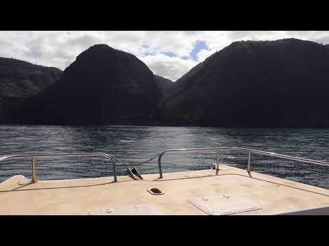 Dolphins Caves Boats In Hawaii