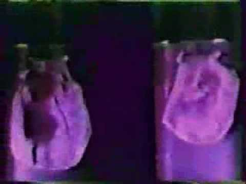 REAL ALIENS LEAKED ON VIDEO!? REAL ALIEN 2013 FOOTAGE ... Real Alien Footage 2013