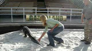 Gator wrestling with the Getaway Girl at Gatorland