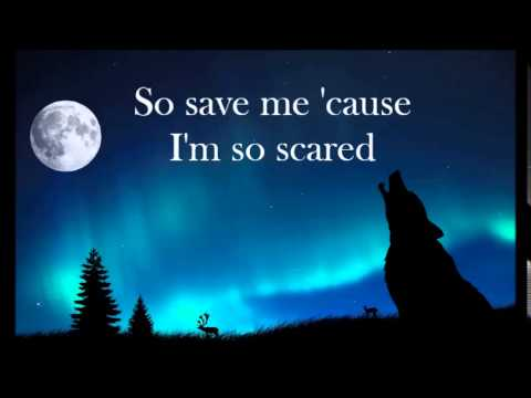 Owl City - Wolf Bite (Lyrics)