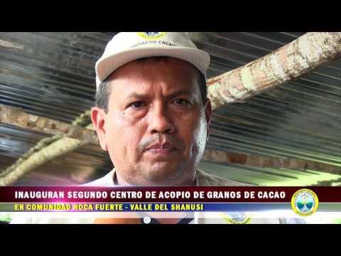 INAUGURAN SEGUNDO CENTRO DE ACOPIO DE GRANOS DE CACAO EN COMUNIDAD ROCA FUERTE VALLE DEL SHANUSI