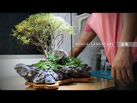 bonsai pot making