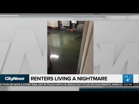 Parkdale renters displaced by raw sewage leak