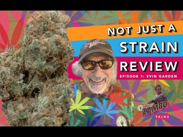 Not Just A Strain Review - Episode 1 - 90 to Zambo Talks