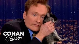 Animal Expert Clyde Peeling: Chinchilla & BlackHeaded Python  'Late Night With Conan O'Brien'
