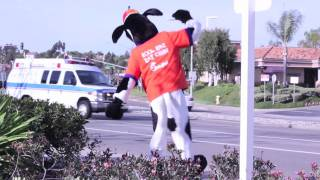 chick fil a cow dancing to black eyed peas