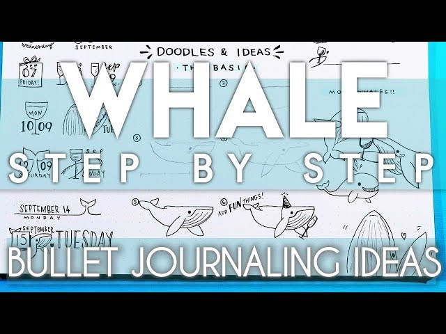 How To Draw A Whale 23 Whale Doodles For Bullet Journal