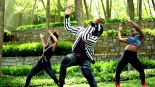 Davido ft  Wizkid, Tekno   Shakale Official Music Video   AFROBEATS 2017