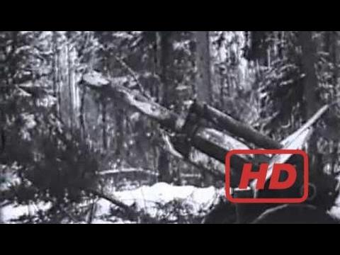 Popular Videos - Battle of Stalingrad & Documentary Movies hd :  Moscow, Leningrad, Stalingrad