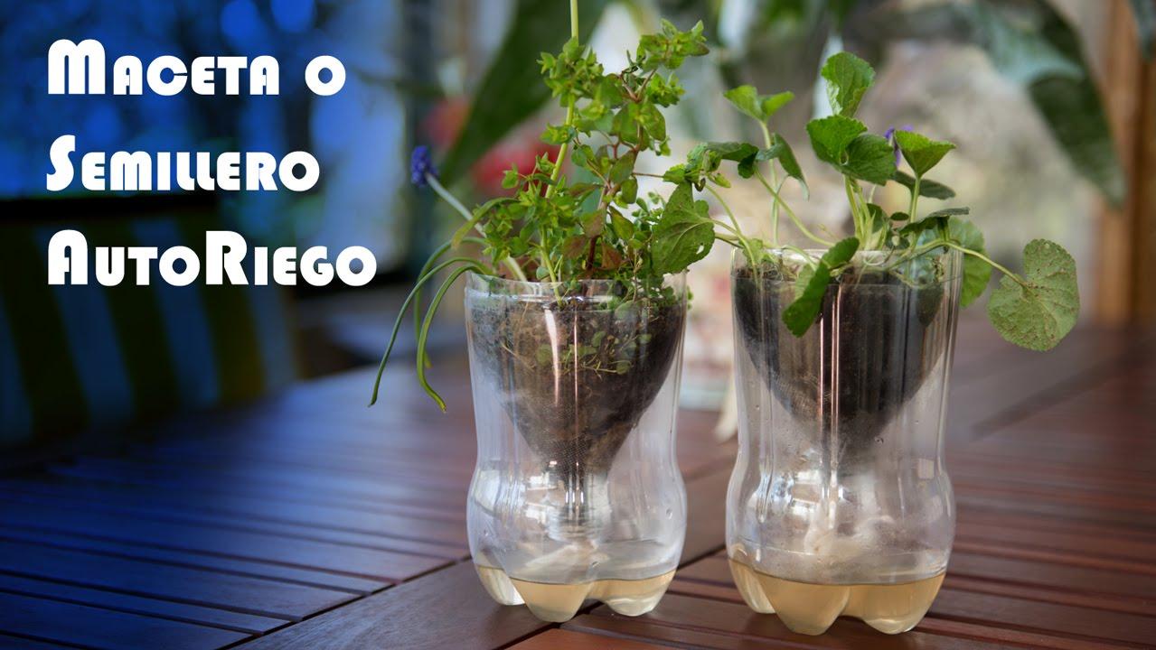 Maceta o semillero invernadero autoriego de botella pet - Como hacer invernadero casero barato ...
