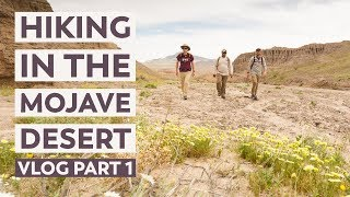 Hiking the Mojave Desert in California | VLOG Part 1