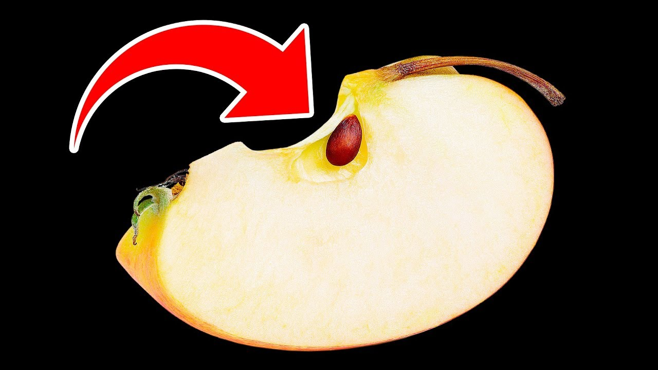 What Will Happen If You Eat Apple Seeds