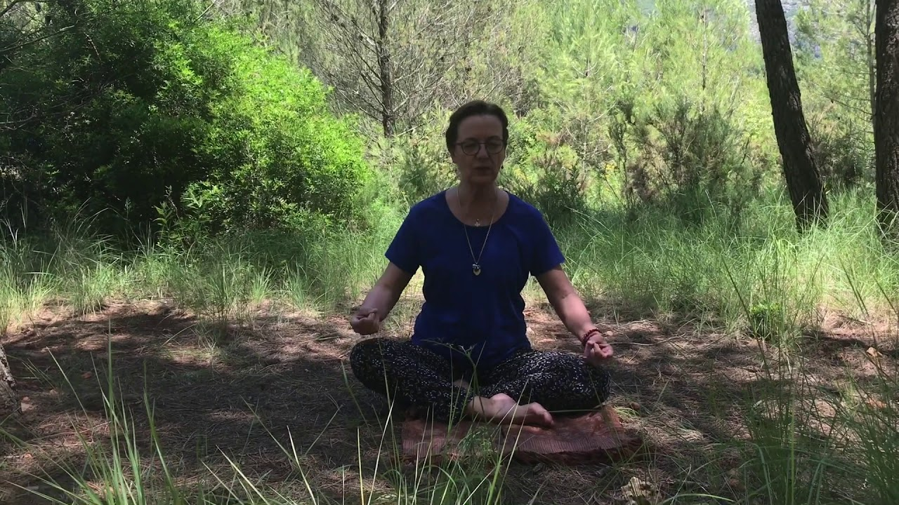 Meditación 5: Visualización positiva