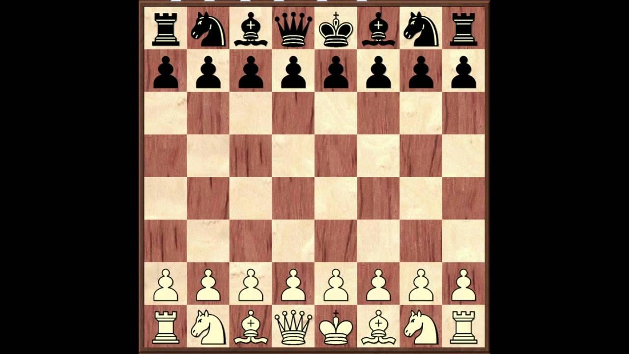 Обучение игры шахматы бесплатно курс обучения работы на компьютере бесплатно