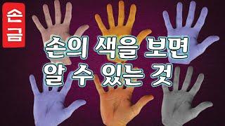 【손금】손의 색을 보면 알 수 있는 것. 건강도 알 수 있다?|손금보는남자