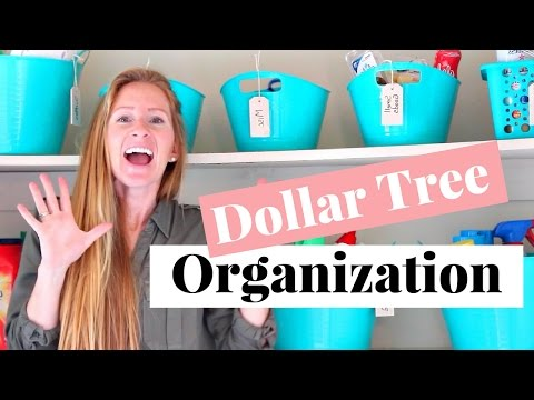 Dollar Tree Organizing Ideas and Tips | Cheap Organization Tips