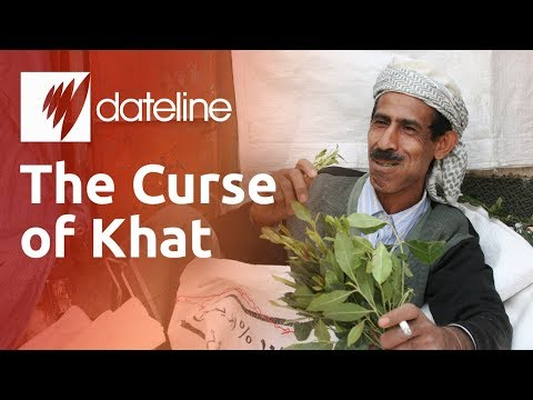 Khat: Yemen's Addictive Narcotic Chewing Leaf