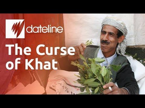 The Curse of Khat