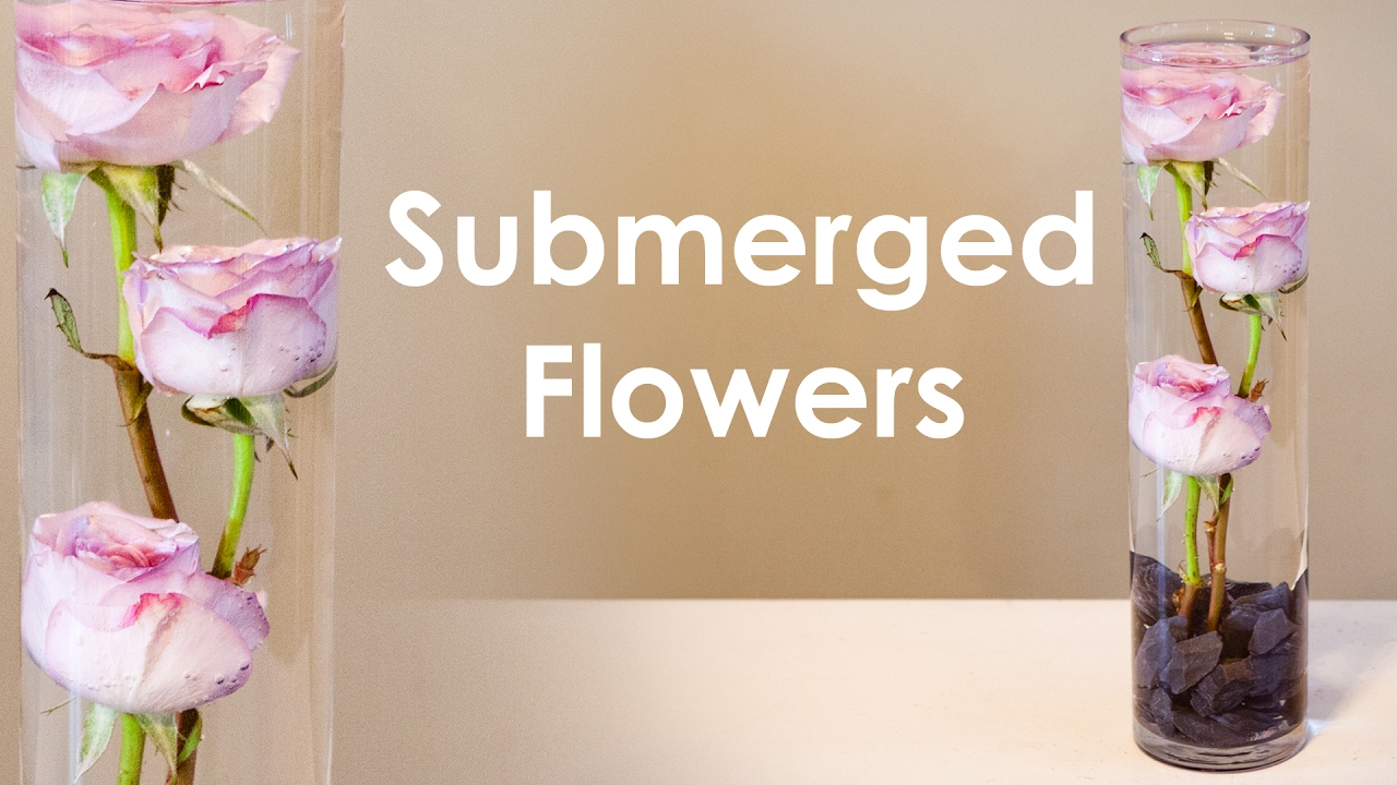 How to create submerged flower arrangement youtube how to create submerged flower arrangement mightylinksfo