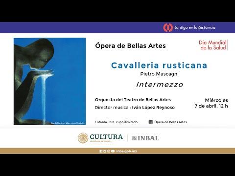 Intermezzo de Cavalleria rusticana / Compañía Nacional de Ópera / INBAL / México