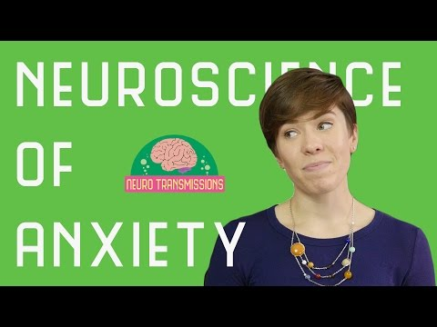 Neuroscience of Anxiety