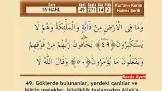 Mehmet Emin Ay - 14. Cüz 2017 Video