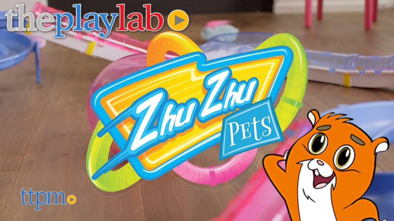 polly and the zhu zhu pets name change