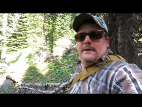 Search for Weird Beastly Creature Jarbidge Wilderness Bigfoot Expedition