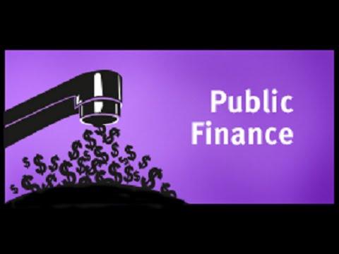 Economic Survey   Public Finance
