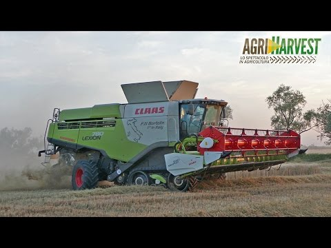 Claas Lexion 780 TT (2016 Version) wheat harvest - FIRST IN ITALY - 4K