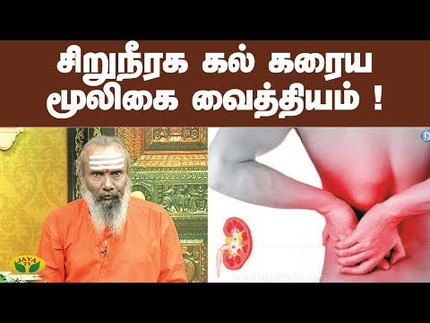 சிறுநீரக கல் கரைய மூலிகை  வைத்தியம் ! |  Kidney Stone | ParamPariya Maruthuvam | Jaya TV
