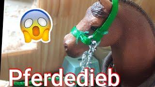Der Horse Club (Folge 20) PFERDEDIEB!😮