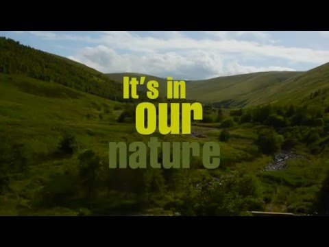 North Northumberland... it's in our nature.  Through the seasons