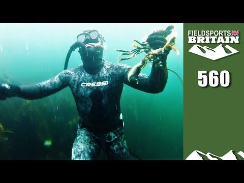 Fieldsports Britain The Undersea World of Cai Ap Bryn