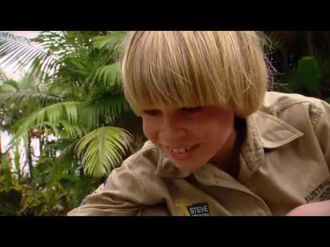 Exclusive Interview with Terri, Bindi and Robert Irwin