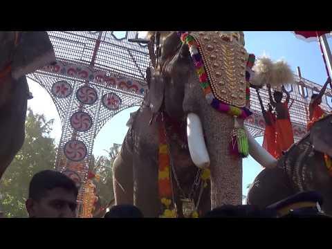 Thechikottukavu Ramachandran at Uthralikavu Temple Pooram 24/02/2015
