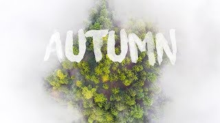 AUTUMN BY DRONE, Germany | Aerial Drone 1080p by thedronebook