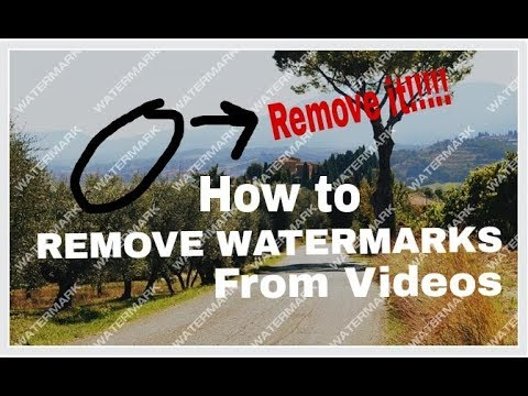 remove watermark from video
