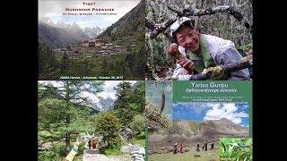 """Tibet - Mushroom Paradise"" Presented By Daniel Winkler - Mushroaming"