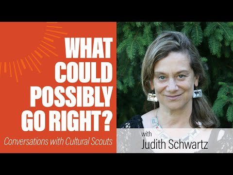 Judith D. Schwartz   What Could Possibly Go Right?
