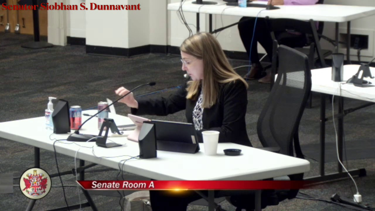 Senator Siobhan Dunnavant Speaking to SB1317 in Public Education Subcommittee