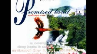 Adam F - F Jam (track n°5) [Promised Land Vol. 1]