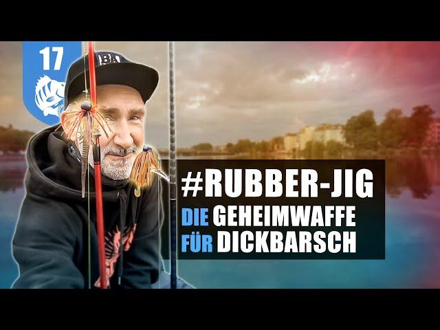 Rubber-Jigs: Geheimwaffe für Dickbarsch (+Gewinnspiel)