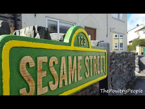 Handheld Router Projects - Sesame Street Wall Art Sign