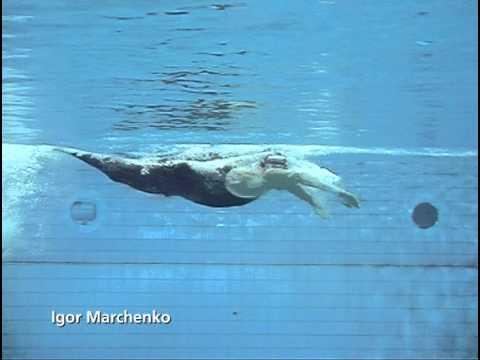 баттерфляй плавание фото