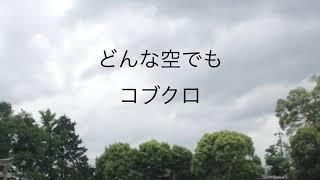 作詞作曲 小渕健太郎 アカペラで二人のハモりから始まるというコブクロ...
