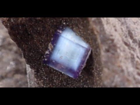Finding Fluorescent Fluorite In Limestone Quarry